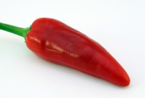 Chili helps you to lose weight faster by burning extra calories